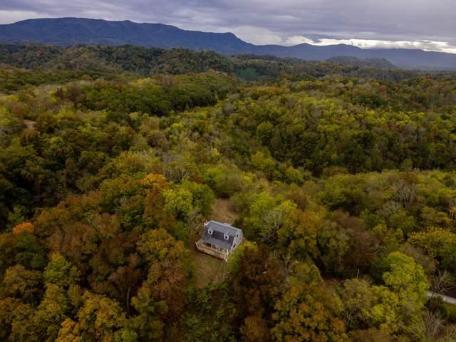 2580 Wildwood Rd, Dandridge, TN 37725 (#1098380) :: SMOKY's Real Estate LLC