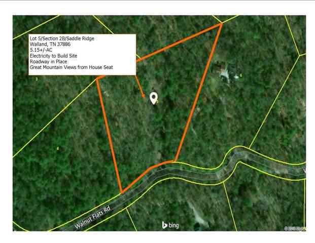 Lot 5/Sect Walnut Flatts Rd, Walland, TN 37886 (#1098445) :: Catrina Foster Group