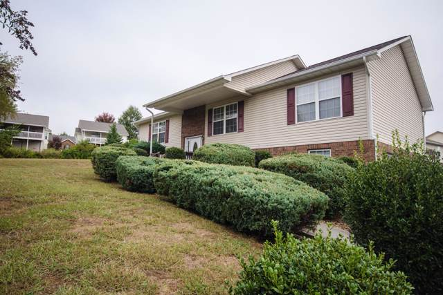 1541 Jasmine Tr, Sevierville, TN 37862 (#1098488) :: The Terrell Team