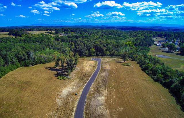Lot 25 Dogwood Meadows Drive, Strawberry Plains, TN 37871 (#1098589) :: Venture Real Estate Services, Inc.
