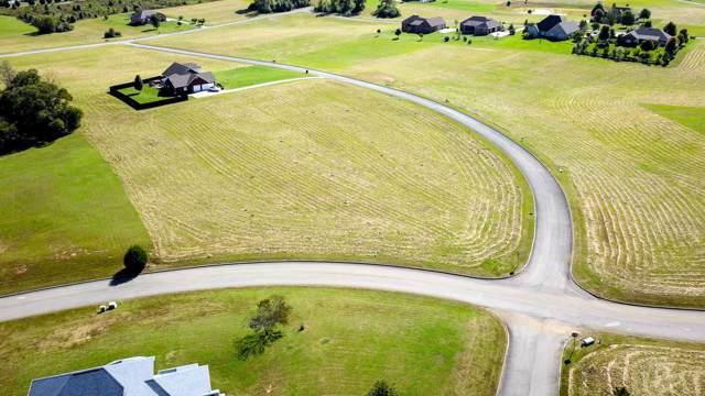Lot55 Bainbridge Drive, Walland, TN 37886 (#1098644) :: SMOKY's Real Estate LLC