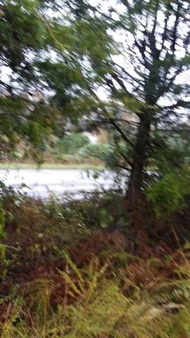Alder Shore Lane, LaFollette, TN 37766 (#1098789) :: The Sands Group