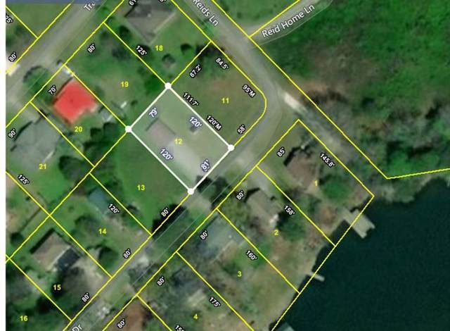 Lot 13 Dabbs Drive, Spring City, TN 37381 (#1098793) :: SMOKY's Real Estate LLC