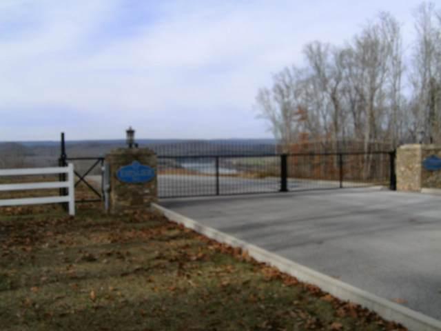 Espalier Drive, Decatur, TN 37322 (#1099089) :: Shannon Foster Boline Group