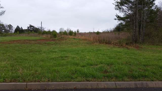 Lot 94 Red Wing Drive, Vonore, TN 37885 (#1099171) :: The Cook Team