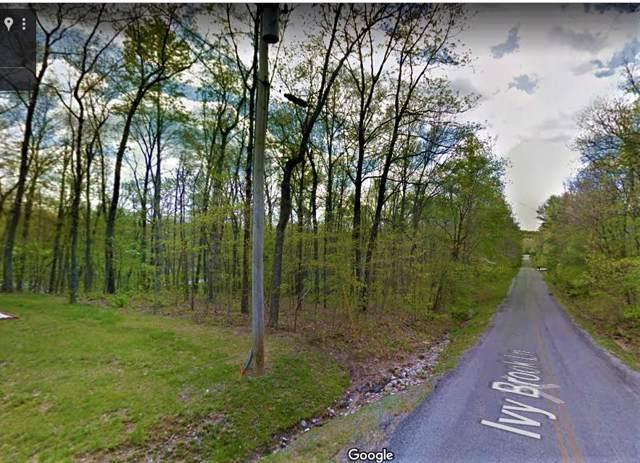 121 Ivy Brook Lane, Crossville, TN 38558 (#1099305) :: Shannon Foster Boline Group