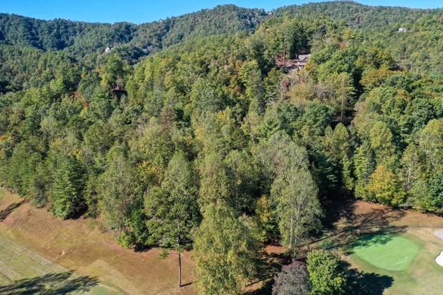 Bear Den Rd, Townsend, TN 37882 (#1099534) :: SMOKY's Real Estate LLC