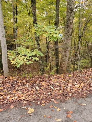 Lot 465 Ski View Lane, Sevierville, TN 37876 (#1099556) :: Shannon Foster Boline Group