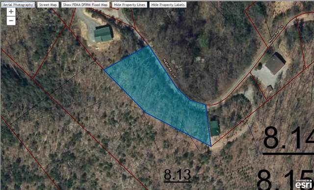 Natures Lane, Sevierville, TN 37862 (#1100005) :: Catrina Foster Group