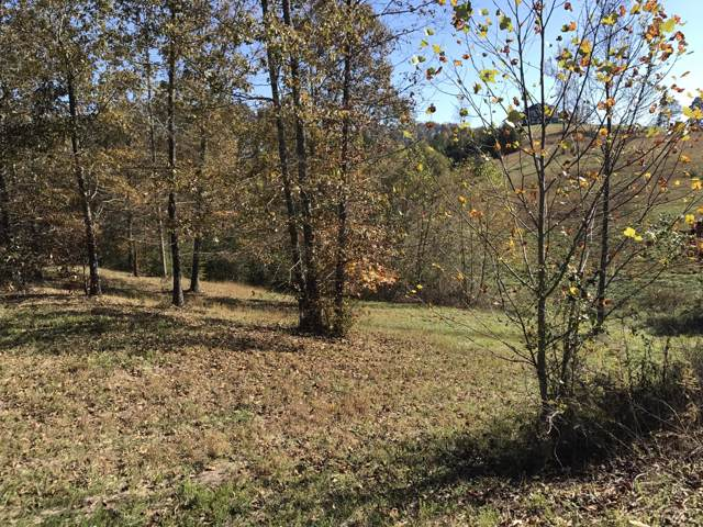 101 Clearwater Cove Drive, Madisonville, TN 37354 (#1100108) :: Venture Real Estate Services, Inc.
