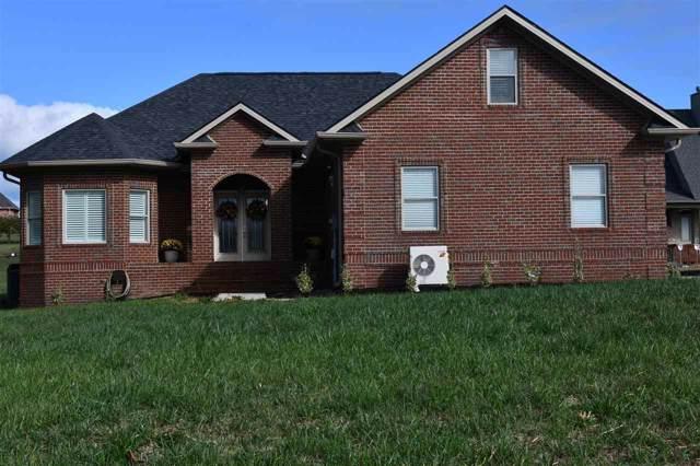 1822 Lakebrook Circle Circle, Dandridge, TN 37725 (#1100148) :: Tennessee Elite Realty