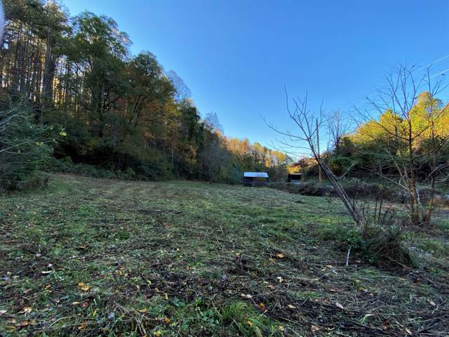00 Seay Hollow Rd Rd, Del Rio, TN 37727 (#1100160) :: Billy Houston Group