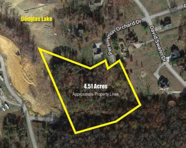 Chestnut Hill Rd, Dandridge, TN 37725 (#1100177) :: Tennessee Elite Realty
