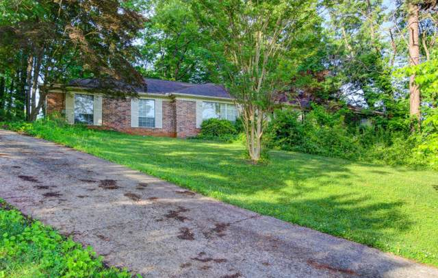 509 Deep Hollow Lane, Knoxville, TN 37923 (#1100396) :: Billy Houston Group