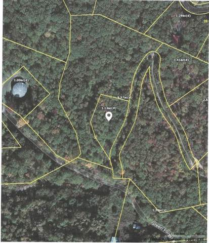 Green Forest Rd, Cosby, TN 37722 (#1100400) :: SMOKY's Real Estate LLC