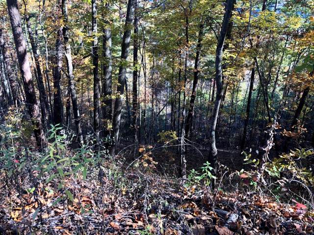 Fox View Rd, Sevierville, TN 37876 (#1100479) :: Venture Real Estate Services, Inc.