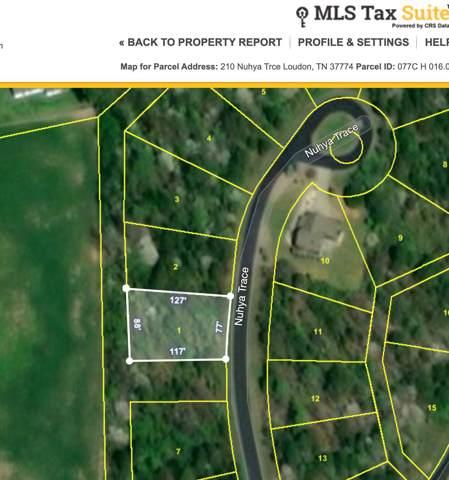 210 Nuhya Trace, Loudon, TN 37774 (#1100502) :: Shannon Foster Boline Group