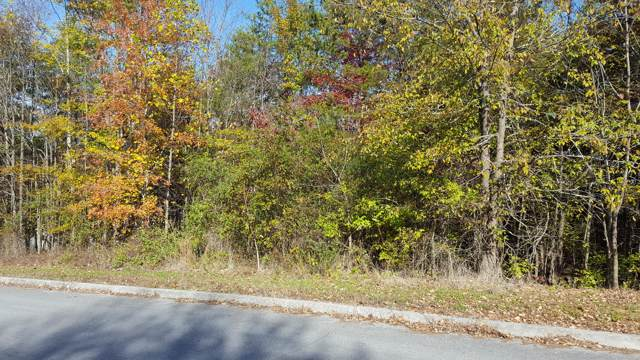 Sentry Ridge View Drive, Seymour, TN 37865 (#1100523) :: Venture Real Estate Services, Inc.