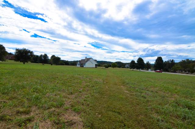 Marble View Drive, Kingston, TN 37763 (#1100571) :: Tennessee Elite Realty