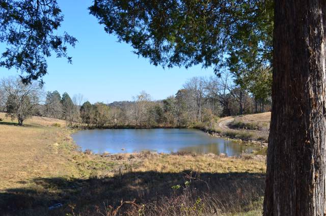 00 Highway 113 (122Acres), Rogersville, TN 37857 (#1100606) :: Realty Executives