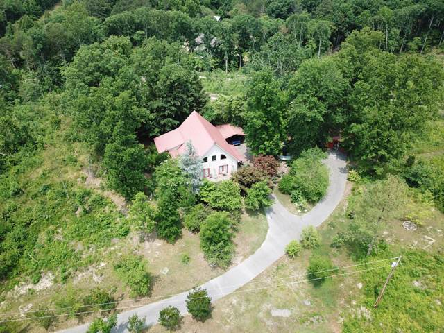 1751 County Road 50, Riceville, TN 37370 (#1100783) :: Billy Houston Group