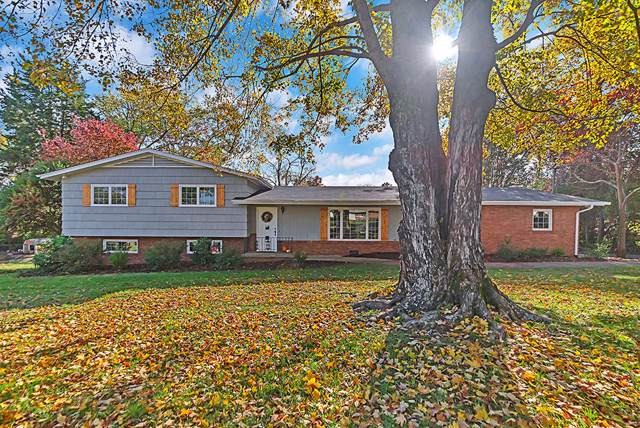 7816 Corteland Drive, Knoxville, TN 37909 (#1100802) :: Shannon Foster Boline Group