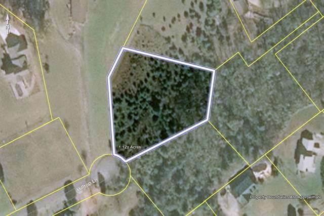 Hilltop Lane, Kodak, TN 37764 (#1100828) :: SMOKY's Real Estate LLC