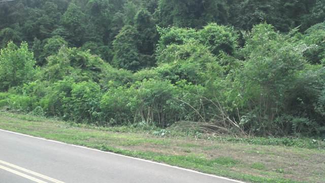 Edwards Rd, Harriman, TN 37748 (#1100841) :: SMOKY's Real Estate LLC