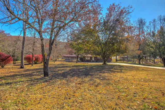 149 Lakehaven Circle, Decatur, TN 37322 (#1101074) :: Shannon Foster Boline Group