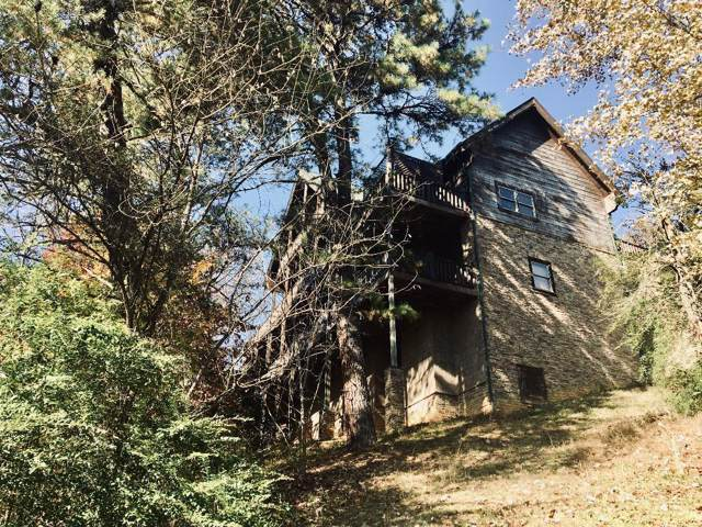 326 Alpine Mountain Way, Pigeon Forge, TN 37863 (#1101091) :: SMOKY's Real Estate LLC