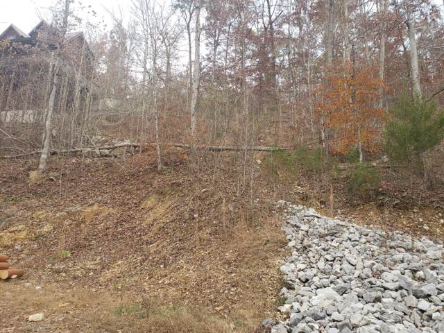 Lot 10 Poplar Creek Court, Caryville, TN 37714 (#1101234) :: Venture Real Estate Services, Inc.