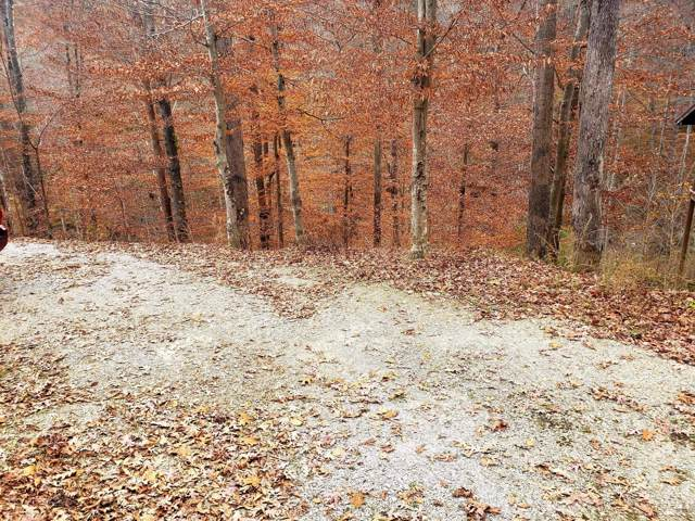 Lot 13 Poplar Creek Court, Caryville, TN 37714 (#1101235) :: Venture Real Estate Services, Inc.