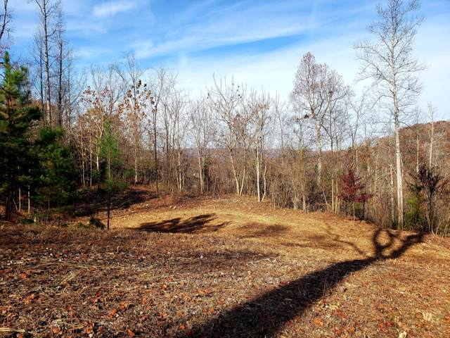 Lot 18 Lakemont Lane, Caryville, TN 37714 (#1101239) :: Adam Wilson Realty