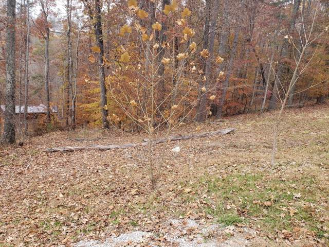 Lot 18 Evergreen Circle, Caryville, TN 37714 (#1101240) :: Venture Real Estate Services, Inc.