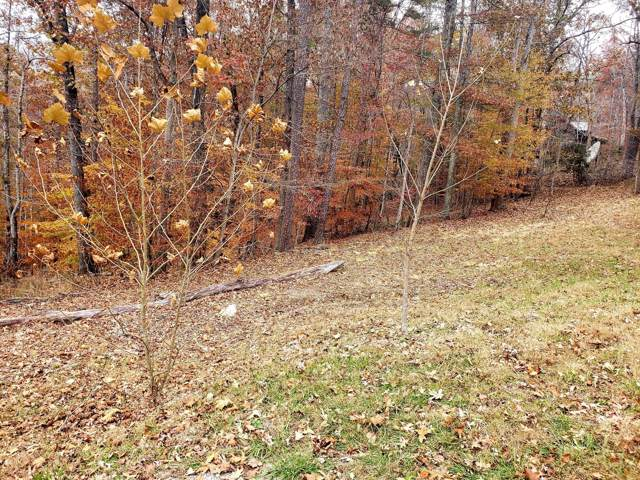 Lot 20 Evergreen Circle, Caryville, TN 37714 (#1101241) :: Venture Real Estate Services, Inc.