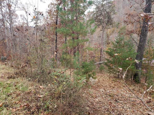 Lot 21 Evergreen Circle, Caryville, TN 37714 (#1101242) :: Realty Executives Associates Main Street