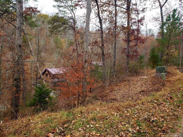Lot19 Evergreen Circle, Caryville, TN 37714 (#1101243) :: Realty Executives Associates Main Street