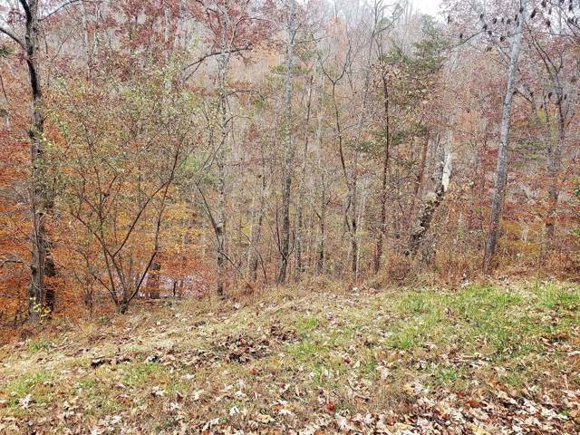 Lot 9 Poplar Creek Court, Caryville, TN 37714 (#1101245) :: Venture Real Estate Services, Inc.