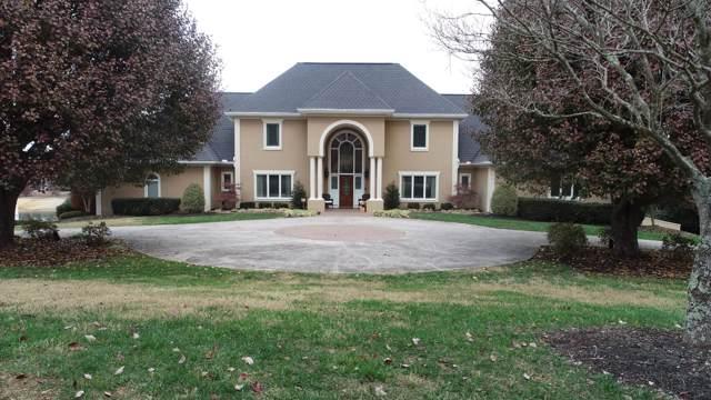 1699 Wind Chase Drive, Talbott, TN 37877 (#1101370) :: Venture Real Estate Services, Inc.