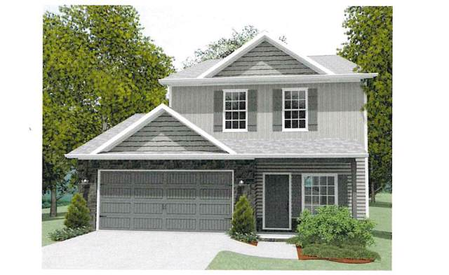 6774 Albatross Lane, Knoxville, TN 37921 (#1101372) :: SMOKY's Real Estate LLC