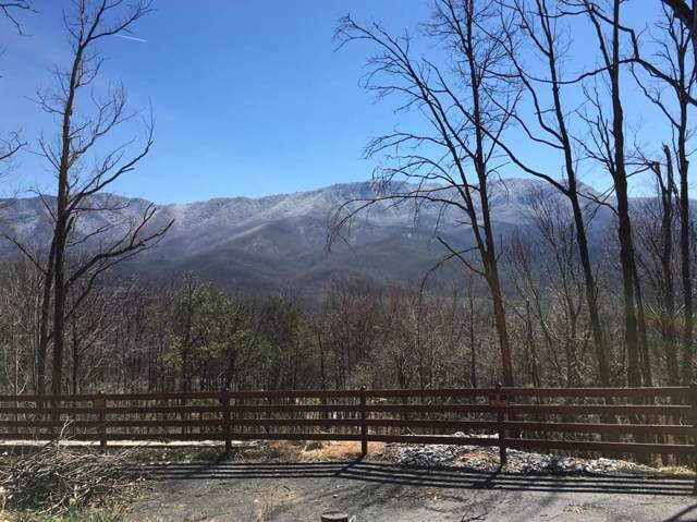 855 Deer Path Lane, Gatlinburg, TN 37738 (#1101427) :: Adam Wilson Realty