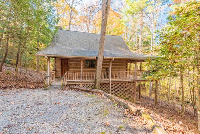 144 Black Mash Hollow Rd, Townsend, TN 37882 (#1101614) :: Venture Real Estate Services, Inc.