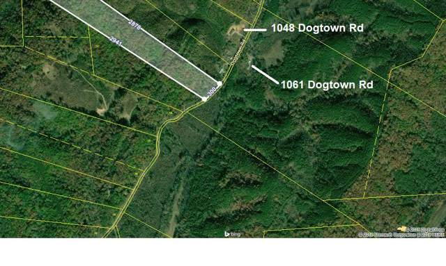 Dogtown Rd, Ten Mile, TN 37880 (#1101842) :: Venture Real Estate Services, Inc.