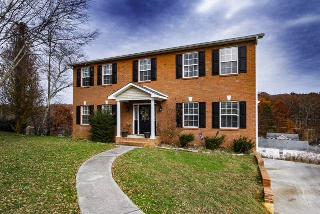 7401 Misty View Lane, Knoxville, TN 37931 (#1101932) :: Catrina Foster Group