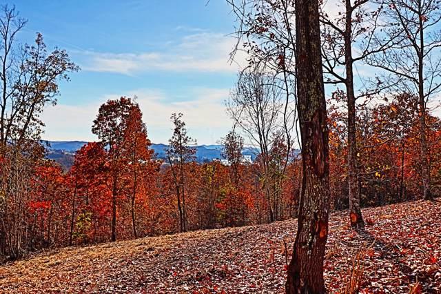 Lt 363 W Mountain Drive, Rockwood, TN 37854 (#1102053) :: Venture Real Estate Services, Inc.