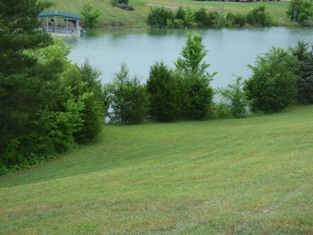 Lot 2 Indian Creek Rd, Dandridge, TN 37725 (#1102074) :: Shannon Foster Boline Group