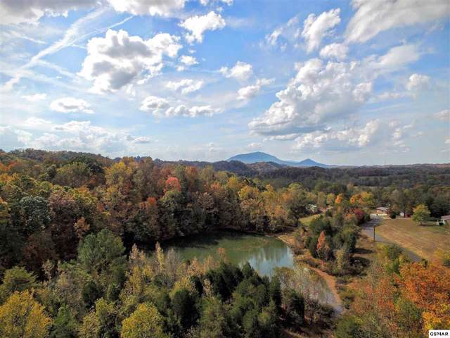Parcel Jersey Drive, Sevierville, TN 37862 (#1102153) :: Shannon Foster Boline Group