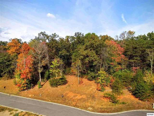 Lot 66 Sierra Lane, Sevierville, TN 37876 (#1102186) :: The Terrell Team