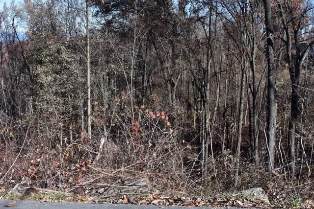 560 Short Ridge Court, Gatlinburg, TN 37738 (#1102237) :: Shannon Foster Boline Group