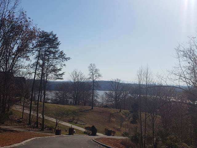 8022 Mountain Ridge Drive, Mooresburg, TN 37811 (#1102370) :: Billy Houston Group